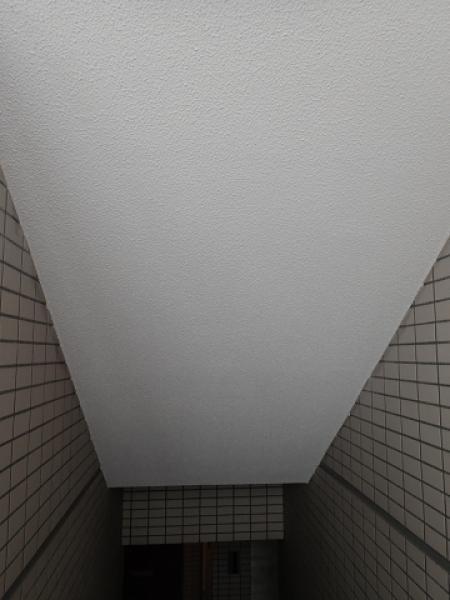 (7)共用部天井塗装 (2)