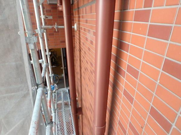 (3)竪樋塗装3