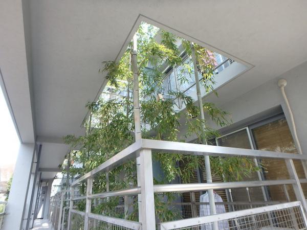 (5) 2階廻り工事完了1