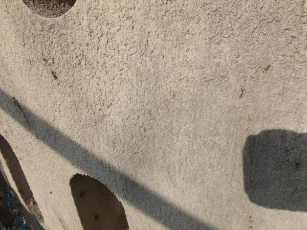 (15)南面外壁蔦の根撤去後